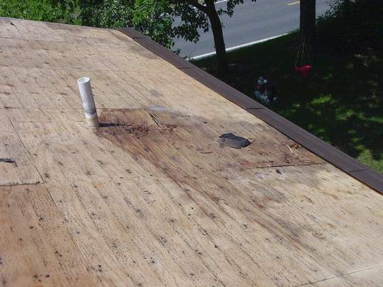 Bad Roof Plywood